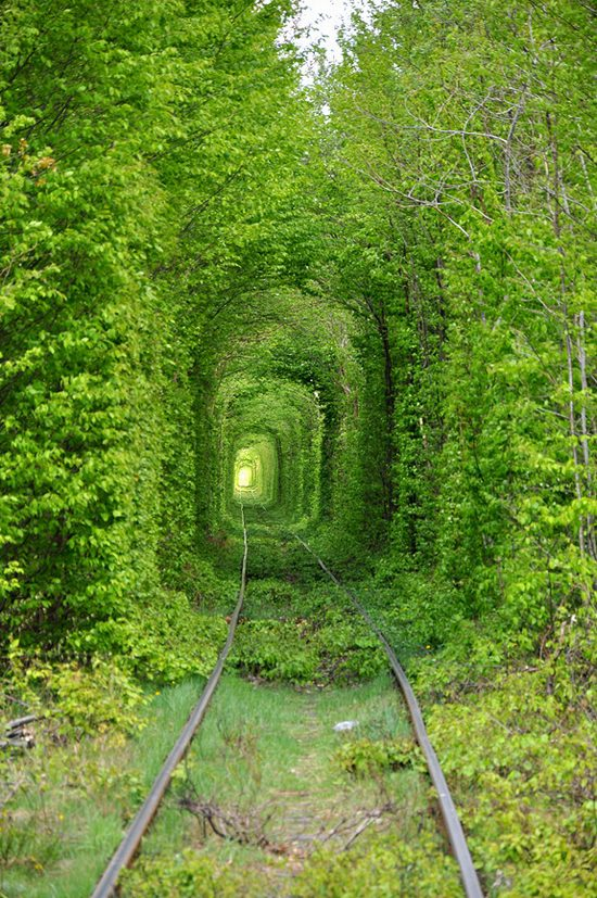 Amazing Quot Tunnel Of Love Quot In Rivne Oblast Icreatived
