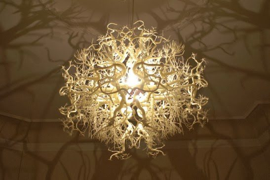 The-light-sculpture-Forms-in-Nature-1