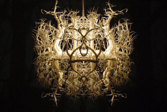 The-light-sculpture-Forms-in-Nature-3