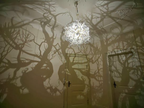 The-light-sculpture-Forms-in-Nature