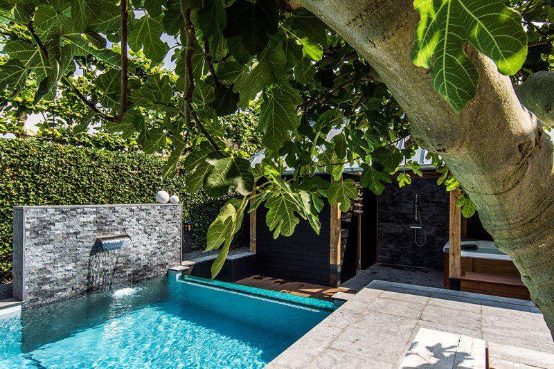 Dream-Backyard-Aquatic-Garden-Design-02