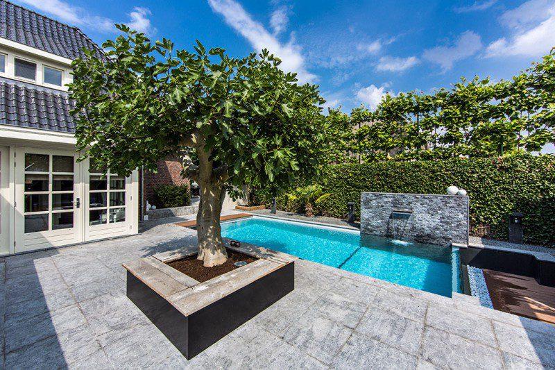 Dream-Backyard-Aquatic-Garden-Design-05