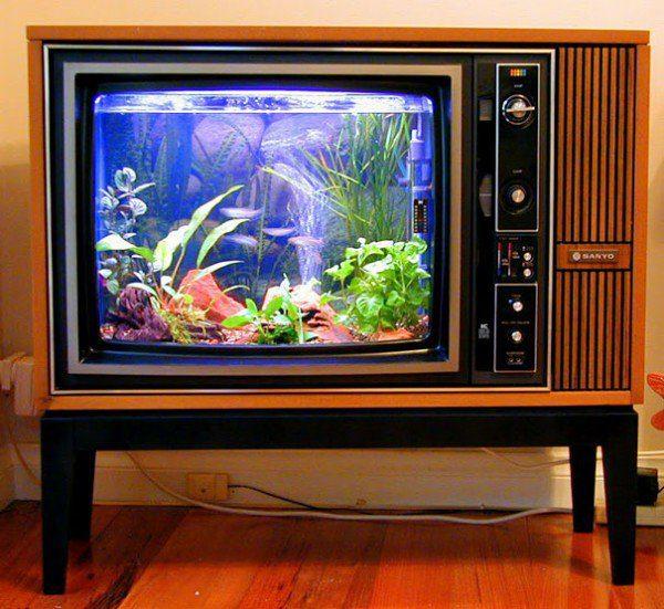 Old TV Into Aquarium