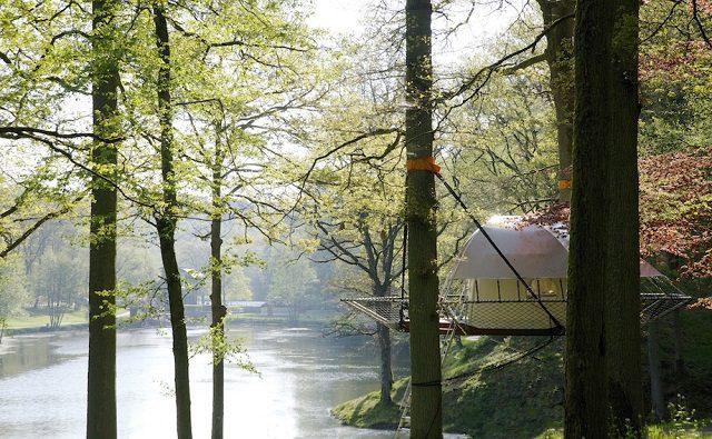 Amazing Dom'Up Treehouse 6
