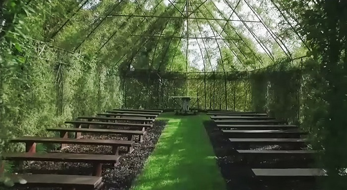 4 Years To Grow A Church From Trees 3