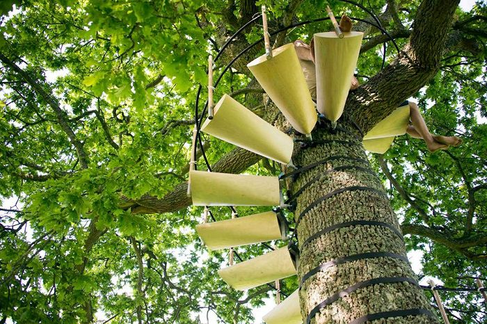 Spiral Staircase For Your Backyard Tree 4