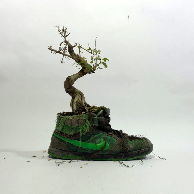 French Artist Monsieur Plant Combines Sneakers With Nature 5