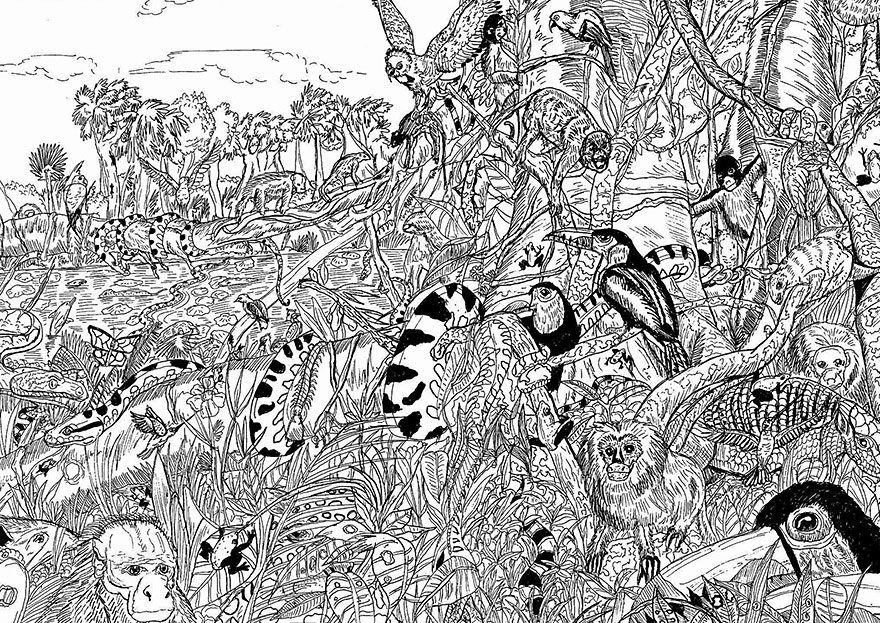 11-Year-Old Artist Creates Amazingly Detailed Drawings of Wildlife 11