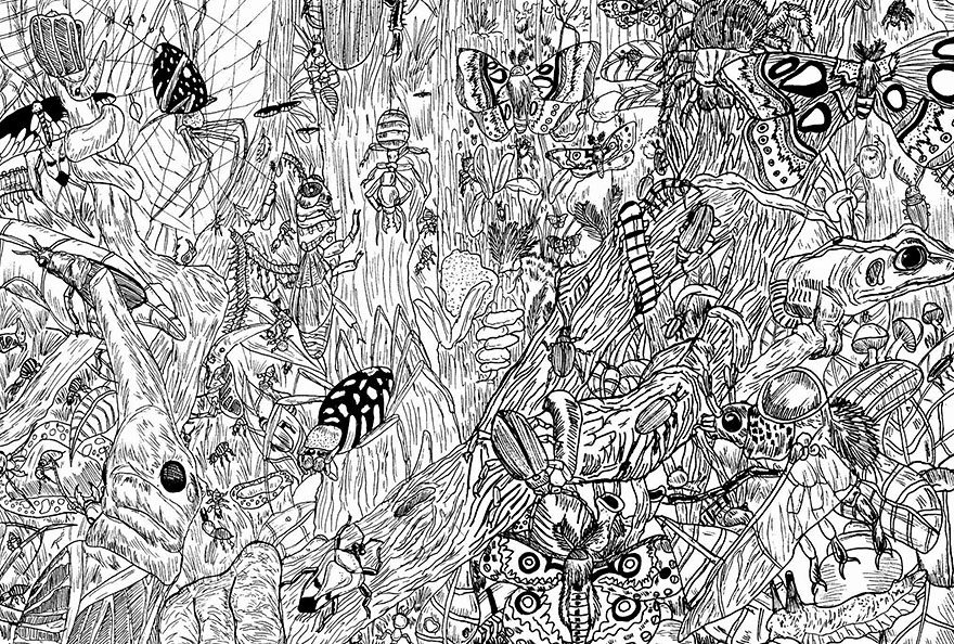 11-Year-Old Artist Creates Amazingly Detailed Drawings of Wildlife 5