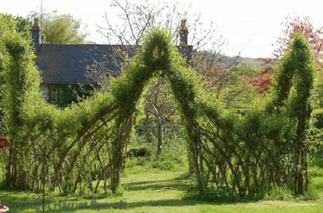 20 Beautiful Examples Of Living Willow Fences 12