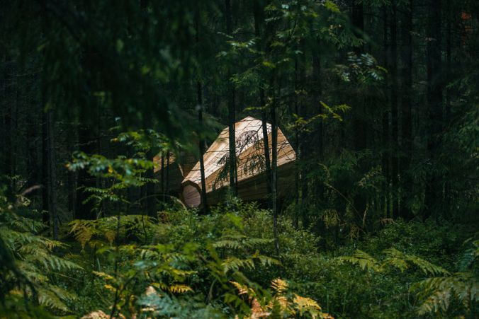 Giant Wooden Megaphones In A Forest To Amplify The Sounds Of Nature 6