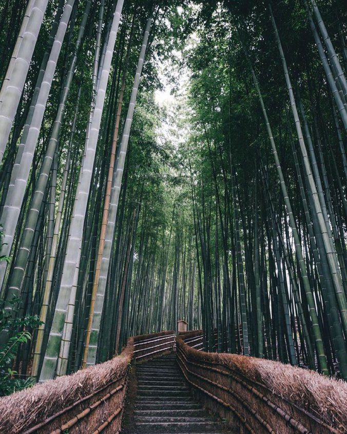 Japanese Photographer Captures Amazing Beauty Of Everyday Life In His Country 1