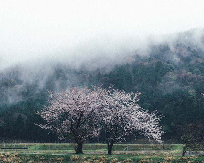 Japanese Photographer Captures Amazing Beauty Of Everyday Life In His Country 2