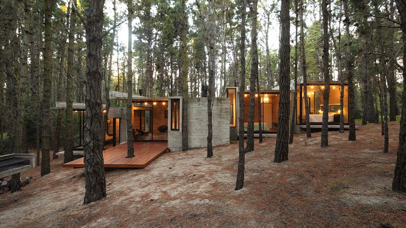 Av House Organic House In The Middle Of Forest Icreatived