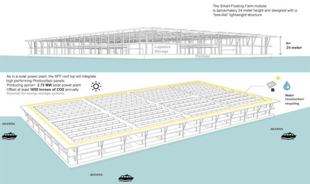 Solar-Powered Floating Farms 7
