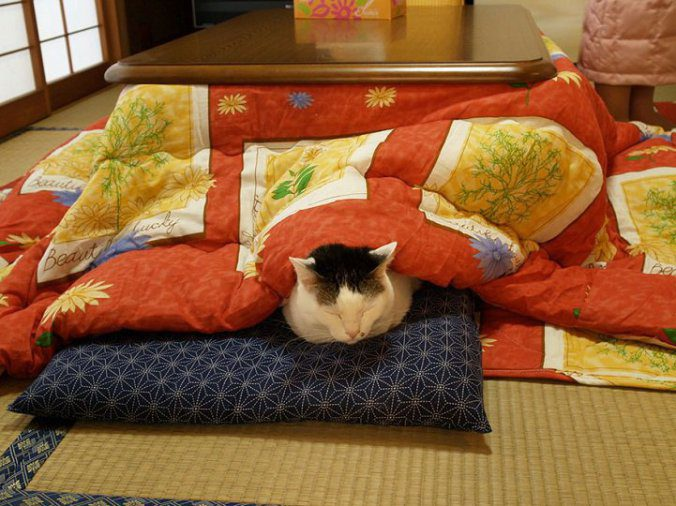 The kotatsu, An Ingenious Japanese Table That Offers The Comfort Of Giant Warm Bed 7