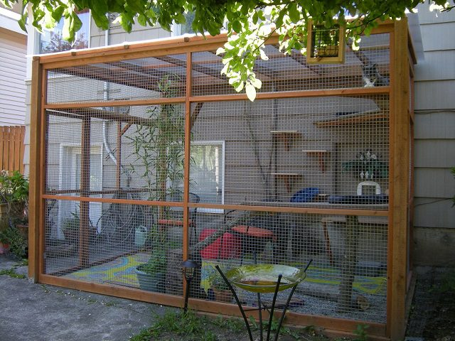 catio spaces keep your cat safe and happy icreatived