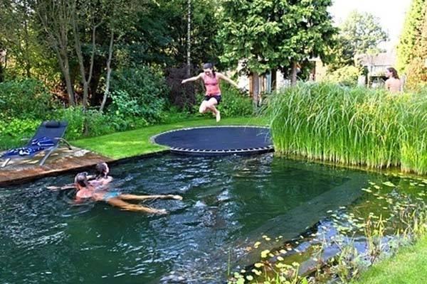 The BioTop Natural Pools 1