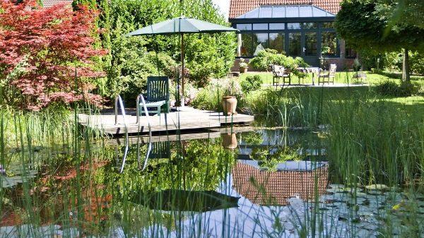 The BioTop Natural Pools 10