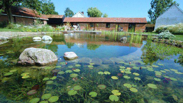 The BioTop Natural Pools 12