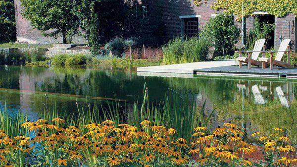The BioTop Natural Pools 14