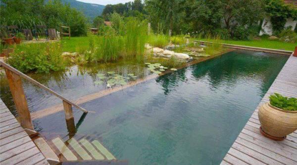 The BioTop Natural Pools 15