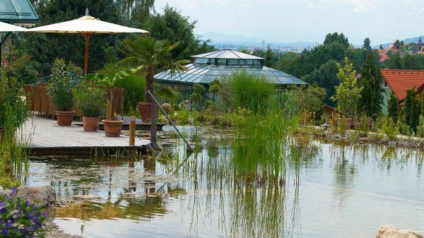 The BioTop Natural Pools 4