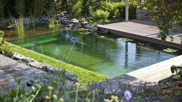 The BioTop Natural Pools 7