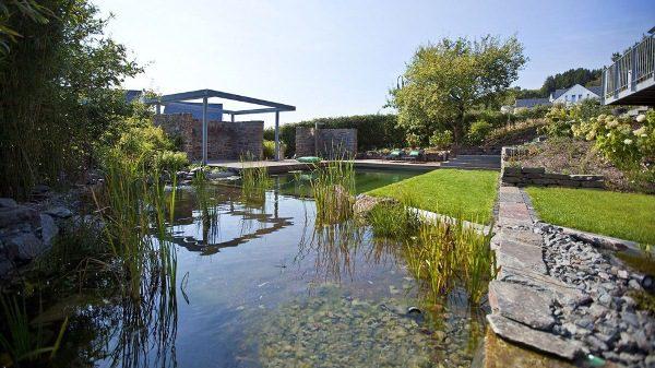 The BioTop Natural Pools 8
