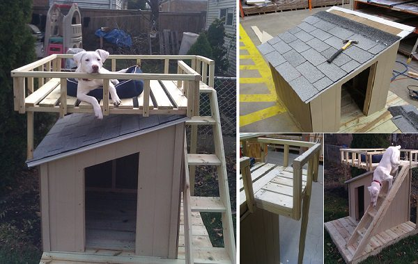 Do It Yourself Home Design: 10 Free Dog House Plans