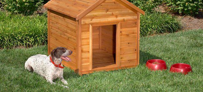 10 Free Dog House Plans 2