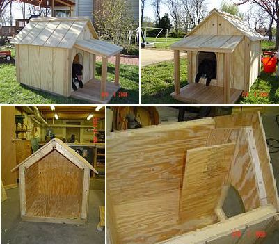 Dog House Online