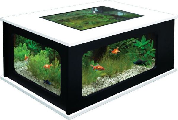 Image Result For Coffee Table Terrarium Diy