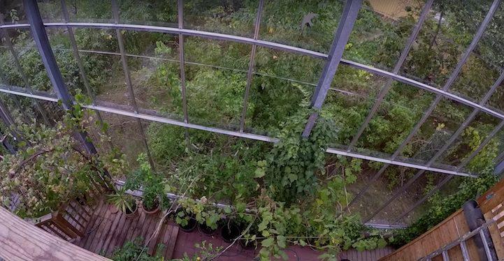 Giant Greenhouse 6