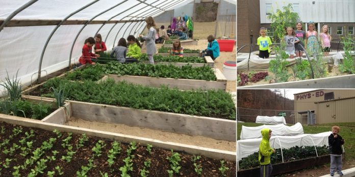 Share if You Think Every School Should Have a YearRound Gardening