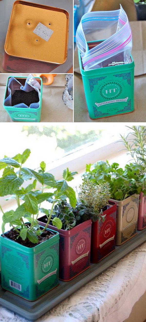 Tea Tin Window Boxes