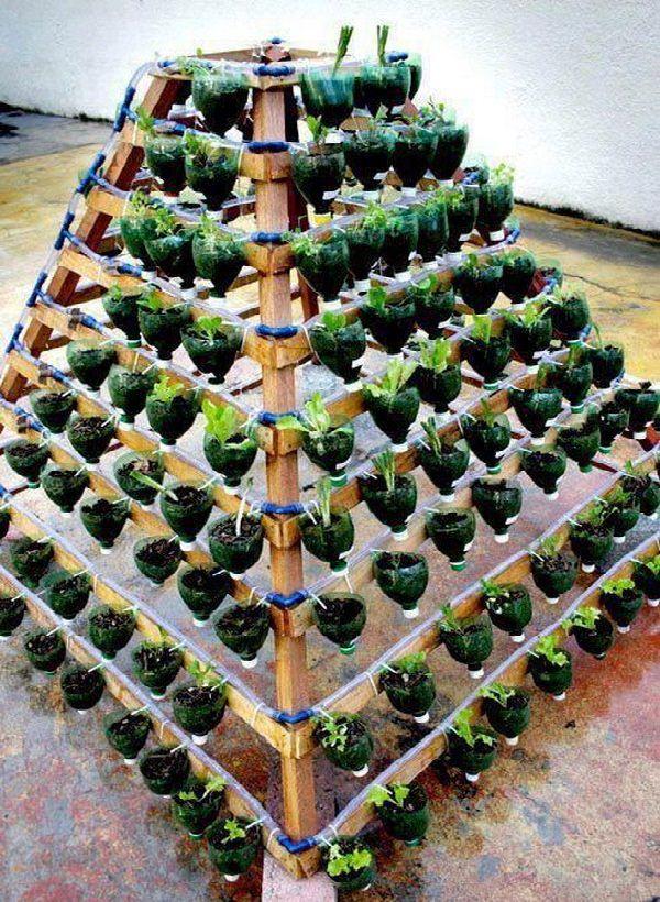Pyramid Plastic Bottle Garden