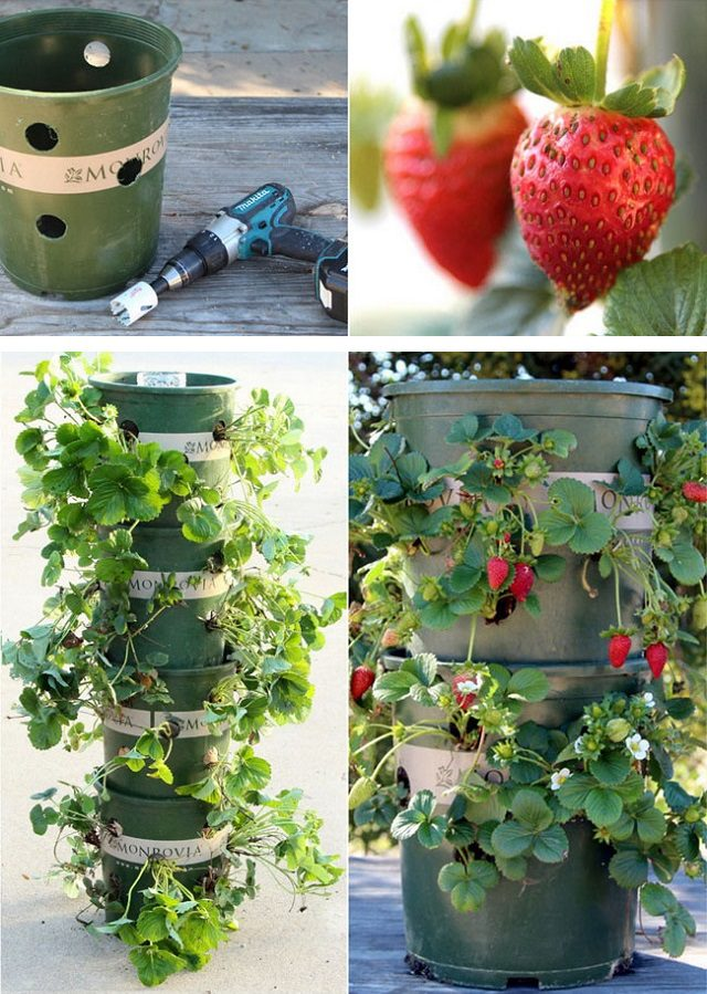 How to deal with Strawberry Tower with a reservoir