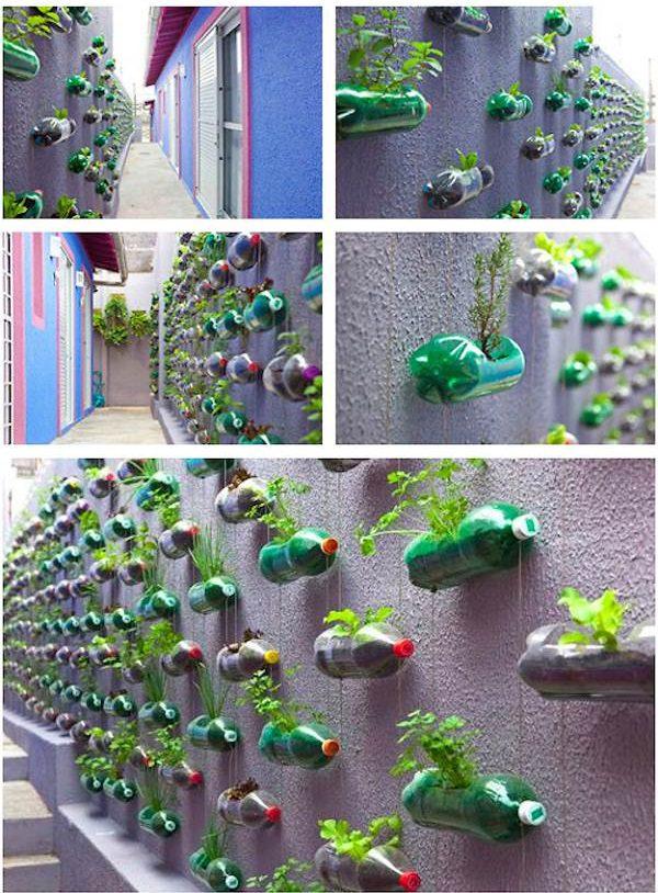 Plastic Bottles on Walls