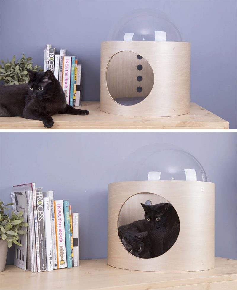 Unique Pet Furniture Spaceship Inspired Cat Beds Icreatived